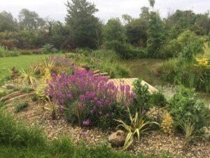 Wading pool garden- call handling does gardening