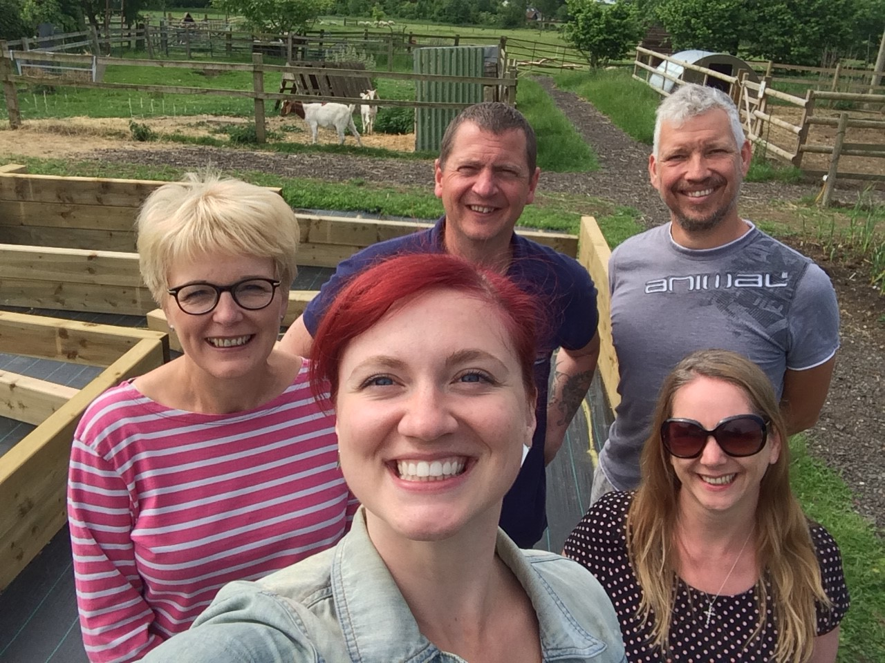 Networking for Charity… and donkeys